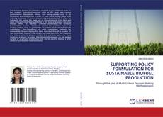 SUPPORTING POLICY FORMULATION FOR SUSTAINABLE BIOFUEL PRODUCTION的封面