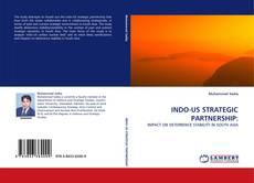 Buchcover von INDO-US STRATEGIC PARTNERSHIP: