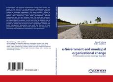 Bookcover of e-Government and municipal organizational change