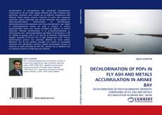 Bookcover of DECHLORINATION OF POPs IN FLY ASH AND METALS ACCUMULATION IN ARIAKE BAY