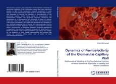 Bookcover of Dynamics of Permselectivity of the Glomerular Capillary Wall