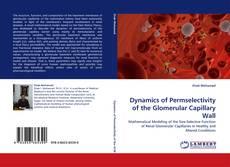 Buchcover von Dynamics of Permselectivity of the Glomerular Capillary Wall