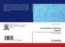 Bookcover of Amenability of Beurling Algebra