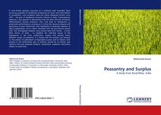 Bookcover of Peasantry and Surplus