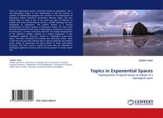 Bookcover of Topics in Exponential Spaces
