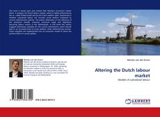 Altering the Dutch labour market kitap kapağı