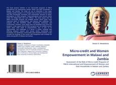 Borítókép a  Micro-credit and Women Empowerment in Malawi and Zambia - hoz