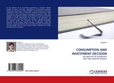 CONSUMPTION AND INVESTMENT DECISION的封面