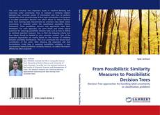 Capa do livro de From Possibilistic Similarity Measures to Possibilistic Decision Trees