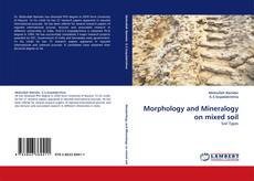Borítókép a  Morphology and Mineralogy on mixed soil - hoz