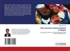 Bookcover of The Juvenile Justice System in Nepal