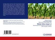 Bookcover of Maize (Zea mays L.)