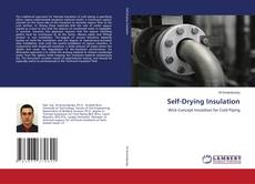 Bookcover of Self-Drying Insulation