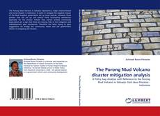 Couverture de The Porong Mud Volcano disaster mitigation analysis