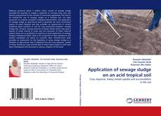 Обложка Application of sewage sludge on an acid tropical soil