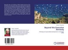Beyond the Executive Amnesty的封面