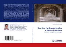 Gas-Side Particulate Fouling in Biomass Gasifiers的封面