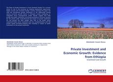 Bookcover of Private Investment and Economic Growth: Evidence from Ethiopia