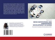 Bookcover of MESO-INSTITUTIONS AND ENDOGENOUS DEVELOPMENT IN GHANA