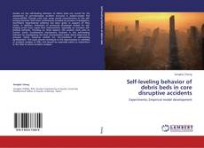 Bookcover of Self-leveling behavior of debris beds in core disruptive accidents