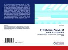 Buchcover von Hydrodynamic Analysis of Groucho Q-Domain