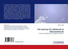 Bookcover of The Journey of a Molecule to Macromolecule