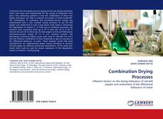 Buchcover von Combination Drying Processes