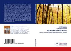 Bookcover of Biomass Gasification
