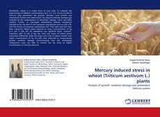 Bookcover of Mercury induced stress in wheat (Triticum aestivum L.) plants
