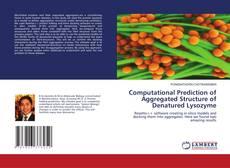 Capa do livro de Computational Prediction of Aggregated Structure of Denatured Lysozyme