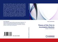 Theory of the Firm in Incomplete Markets kitap kapağı
