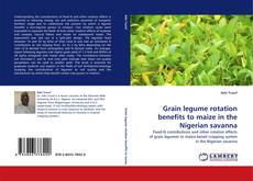 Bookcover of Grain legume rotation benefits to maize in the Nigerian savanna