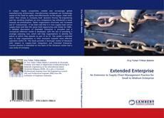 Extended Enterprise kitap kapağı