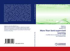 Bookcover of More Than Semi-supervised Learning