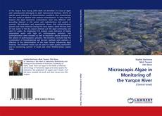 Bookcover of Microscopic Algae in Monitoring of  the Yarqon River