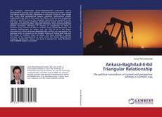 Ankara-Baghdad-Erbil Triangular Relationship kitap kapağı