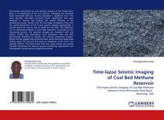 Bookcover of Time-lapse Seismic Imaging of Coal Bed Methane Reservoir