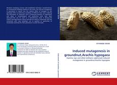 Bookcover of Induced mutagenesis in groundnut,Arachis hypogaea