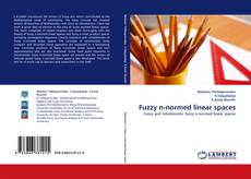 Buchcover von Fuzzy n-normed linear spaces