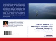 Selective Removal and Recovery of Phosphate from Municipal Wastewater kitap kapağı