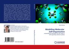 Bookcover of Modelling Molecular  Self-Organisation