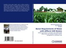 Bookcover of Boron Requirements of Maize with differnt SAR Waters