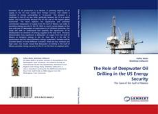 Copertina di The Role of Deepwater Oil Drilling in the US Energy Security