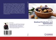 Bookcover of Biodiesel Production and Optimization