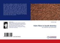 Bookcover of Palm Fibre in South America