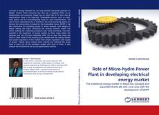 Couverture de Role of Micro-hydro Power Plant in developing electrical energy market