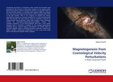 Borítókép a  Magnetogenesis from Cosmological Velocity Perturbations - hoz