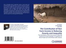 The Contribution of Non Farm Income in Reducing Poverty and Inequality kitap kapağı
