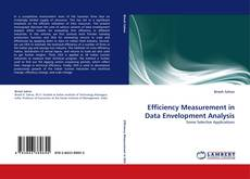 Buchcover von Efficiency Measurement in Data Envelopment Analysis