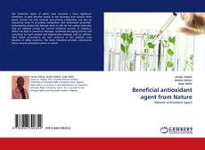 Bookcover of Beneficial antioxidant agent from Nature